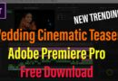 Adobe Premiere Pro Wedding Teaser Projects Free Download